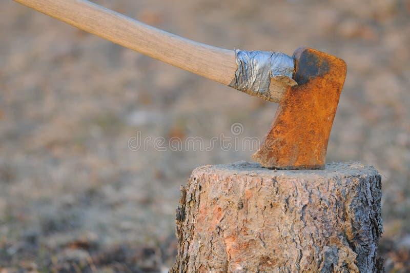 Axe embedded in tree stump stock photos