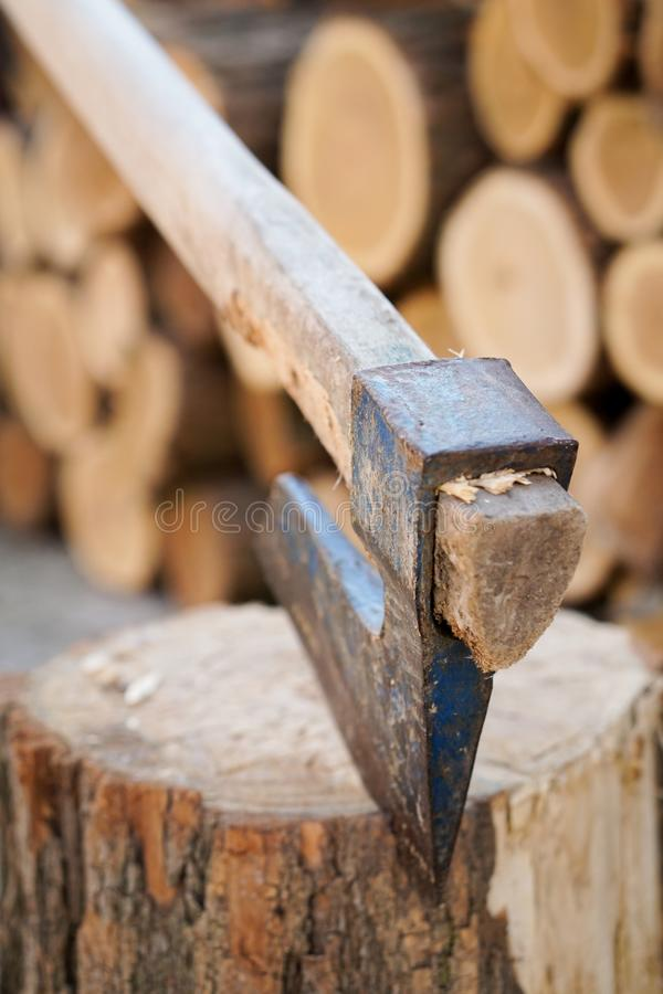 Axe in wood. With blurred background stock image