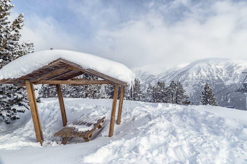 Axel i bergen i snön bland granarna royaltyfria bilder