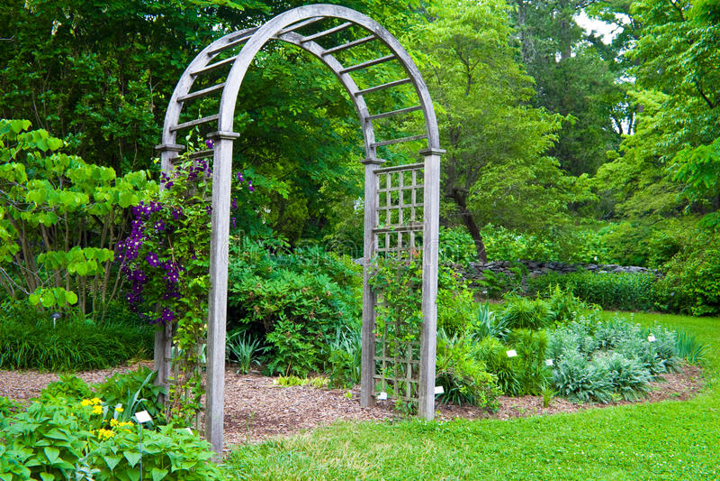 axelträdgård fotografering för bildbyråer