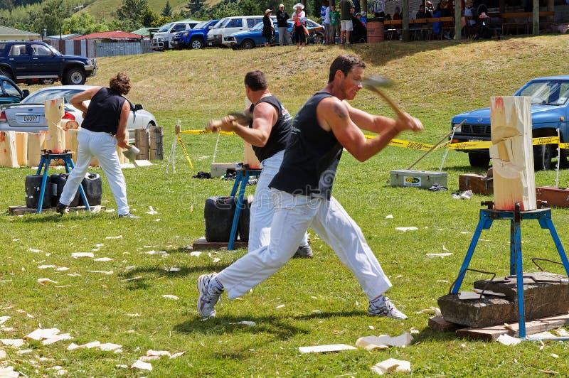 Axemen em uma competição, em uma mostra de desbastamento de madeira de Tapawera A & de P, Nova Zelândia fotografia de stock