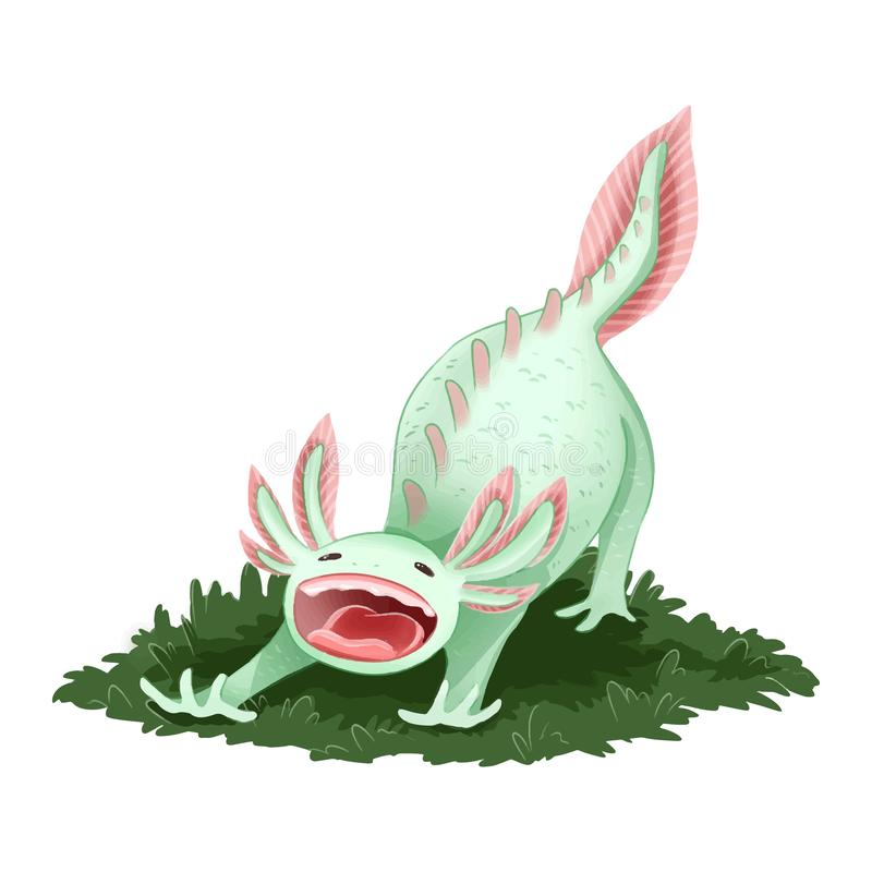 Axolotl bonito imagem isolada Imagem de bocejo de triton ilustração stock