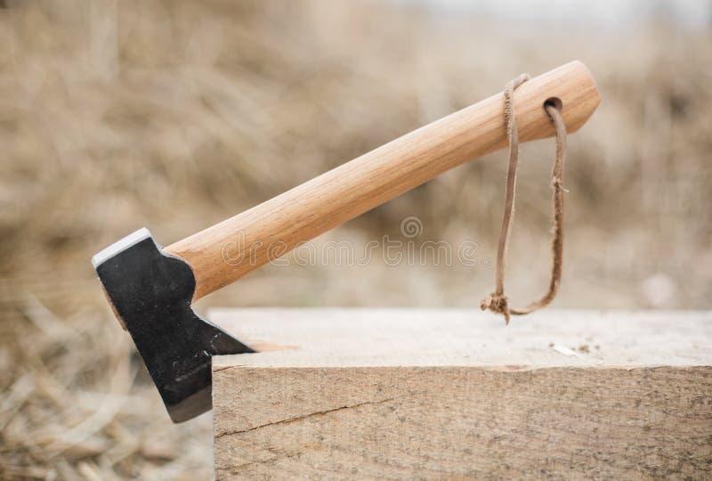Axt im Holz lizenzfreie stockbilder