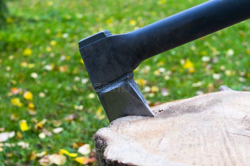 Axt im Stumpf Axt bereit zum Schnitt des Bauholzes Holzbearbeitungswerkzeug Holzfälleraxt im Holz, das Bauholz hackt Reiseabenteu lizenzfreie stockbilder