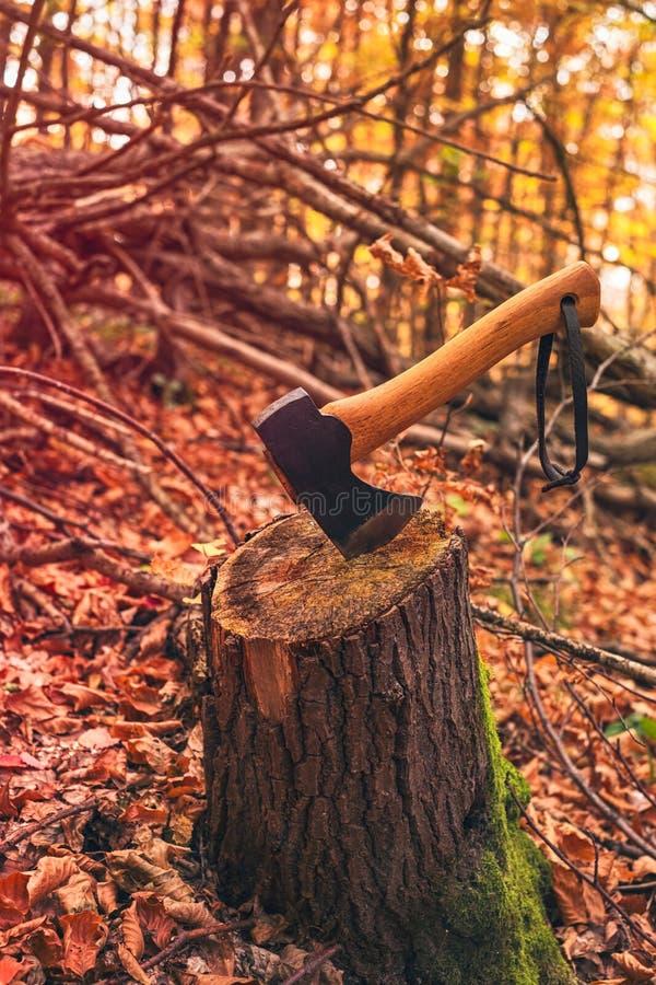 Axt oben gehaftet im Baumstumpf stockbilder
