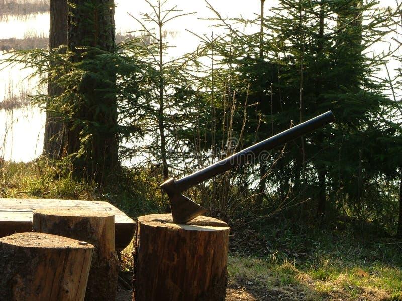Axt zwängte in Baumstumpf stockfotos