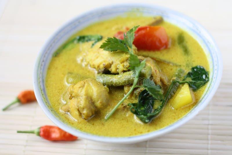 Ayam Masak Lemak- Traditional Malay Cuisine royalty free stock image