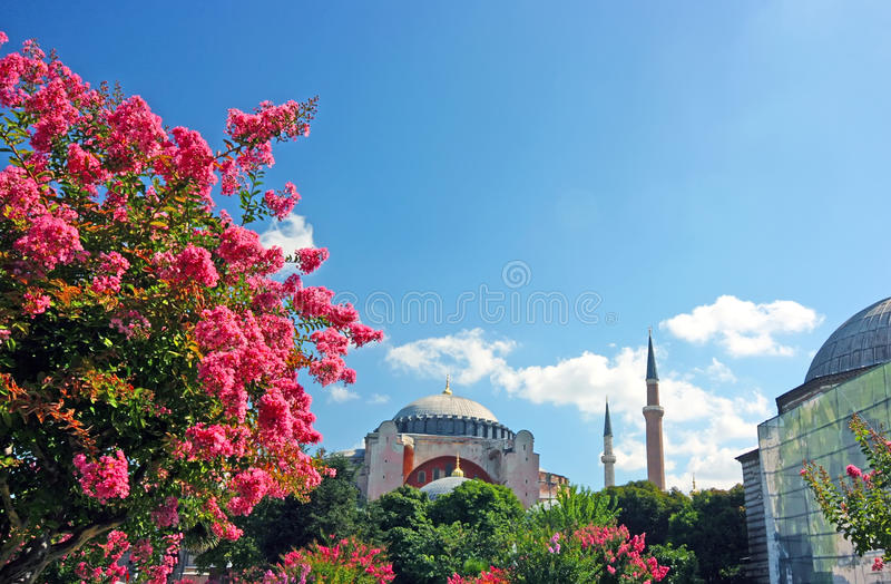 ayasofya庭院近伊斯坦布尔清真寺 免版税库存照片