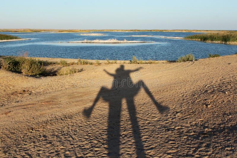 Aydarkul - lago em Usbequistão fotografia de stock