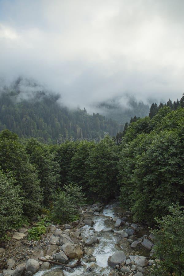 Aydarrivier, van begin stock afbeelding