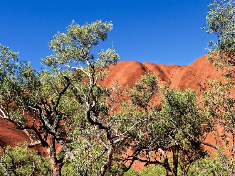 Ayers Rock. Alice Springs, Australia royalty free stock images