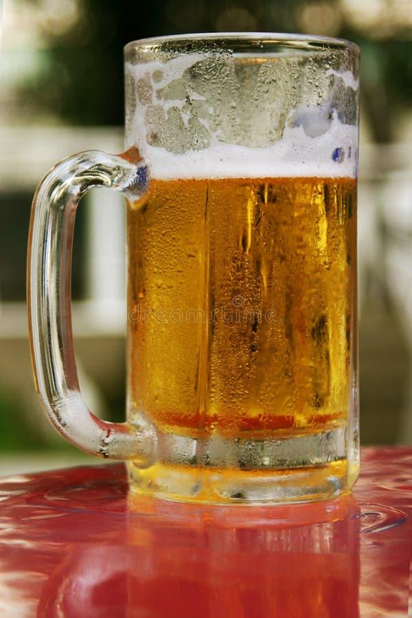 Ayez une bière image stock