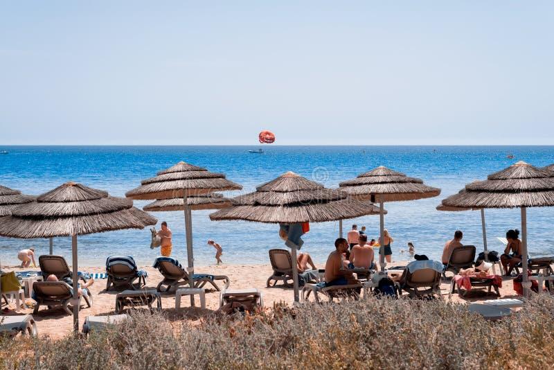 Ayia Napa, Cyprus - July 04, 2018: Umbrellas and deckchairs at Nissi beach royalty free stock photo