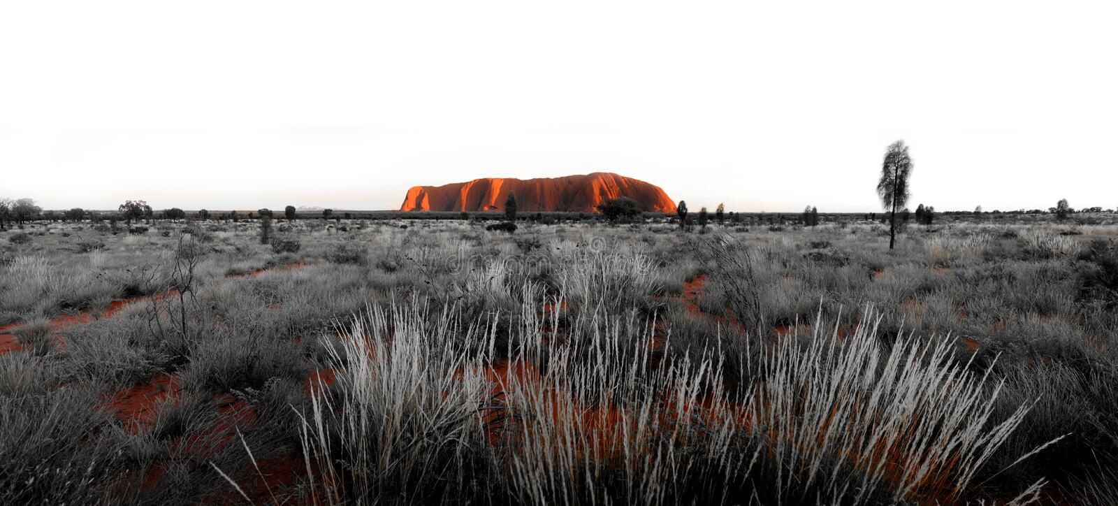 Ayres Rock Uluru Panorama royalty free stock photography