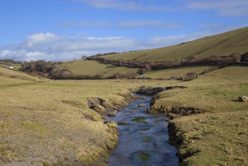 Ayrmer liten vik, Devon, England fotografering för bildbyråer