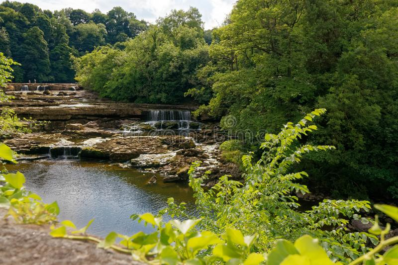 Aysgarth fällt nahe Yore-Mühle in North Yorkshire stockfotos