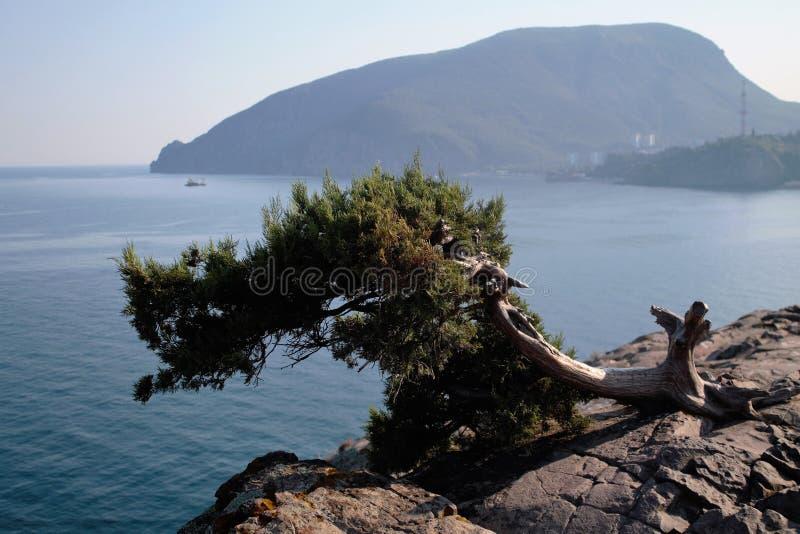 Ayu-Dag björnberget, Krim, svart ser arkivfoton