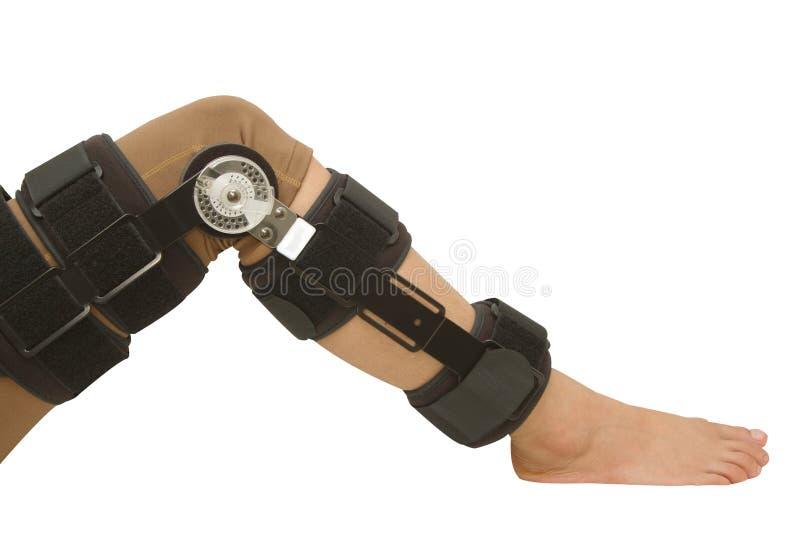 Ayuda ajustable del apoyo de rodilla del ángulo para la pierna o la lesión de rodilla fotos de archivo libres de regalías
