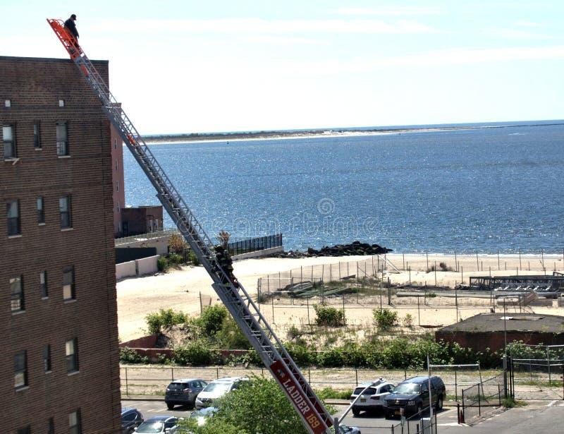 Ayuda del bombero seis escaleras Brooklyn Nueva York del edificio de la historia fotos de archivo