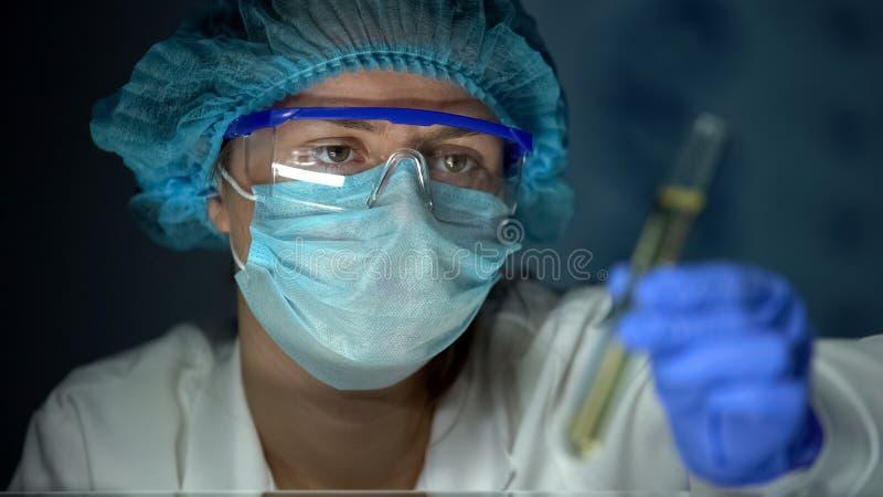 Ayudante de laboratorio que mira el tubo con el l?quido amarillo transparente, prueba del combustible biol?gico fotos de archivo libres de regalías