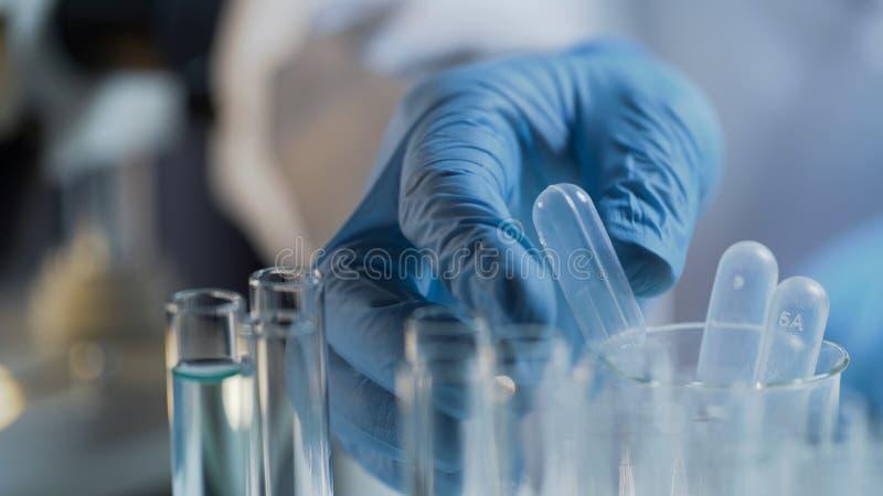 Ayudante de laboratorio que realiza las pruebas en laboratorio, sustancias líquidas de examen imagenes de archivo