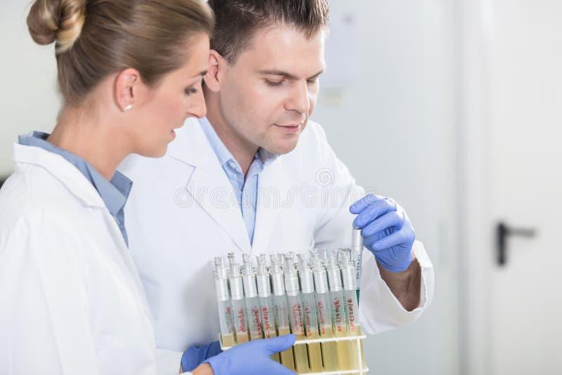 Ayudantes de laboratorio en el laboratorio de investigación que prepara las muestras para el scie fotografía de archivo libre de regalías