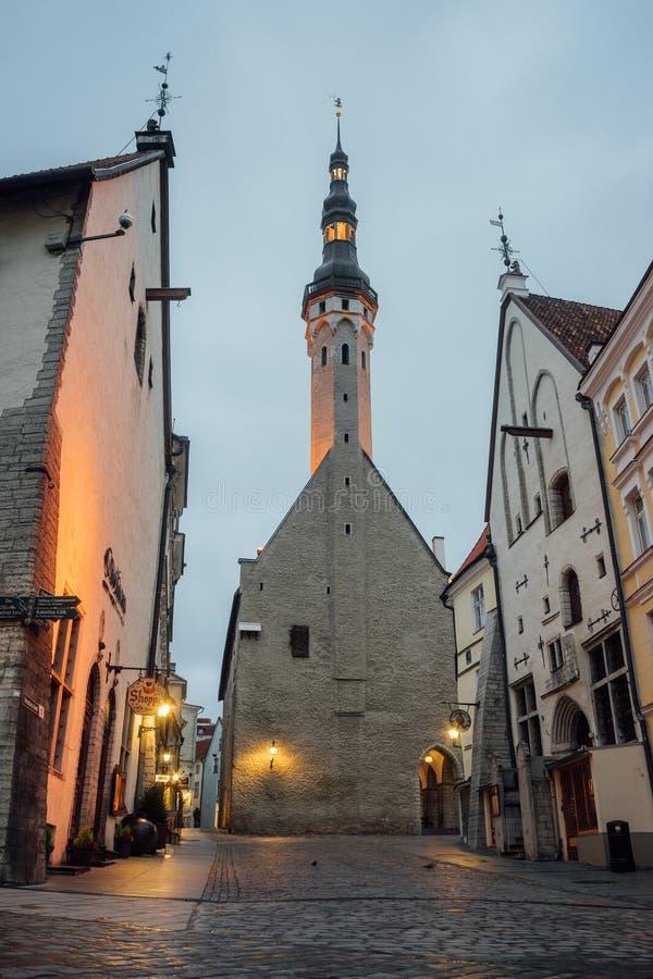 Ayuntamiento, Estonia Tallinn imágenes de archivo libres de regalías