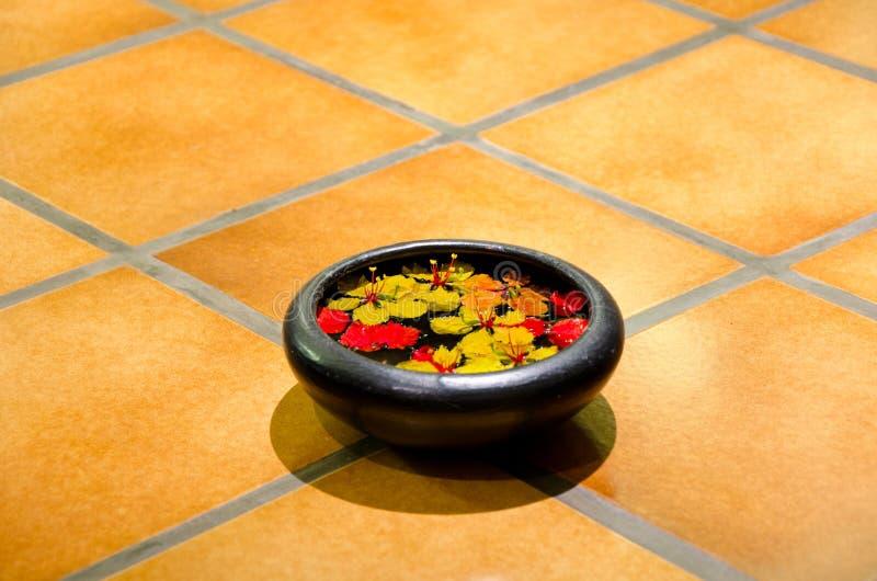 Download Ayurveda stock image. Image of essential, ayurvedic, herbal - 23360729