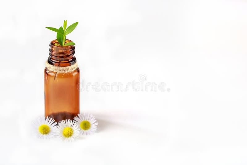 Ayurveda, alternatywna medycyna, istotny olej i ziołowy traktowanie zdrój, dbamy zdjęcia royalty free