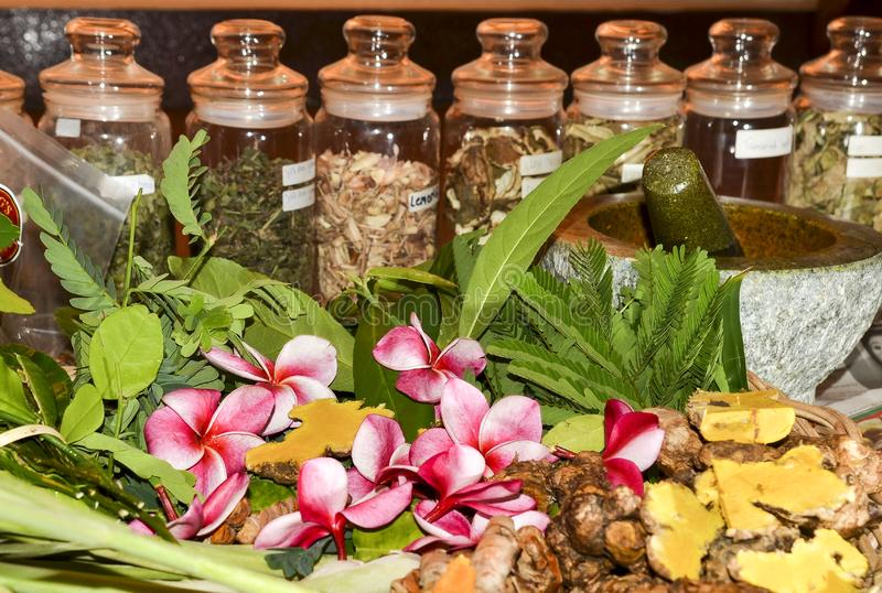 Ayurveda herbs and roots for treatment 2019 royalty free stock image