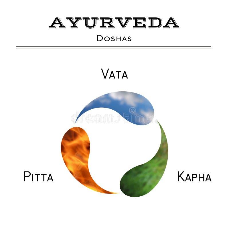 Ayurveda illustration. Ayurveda doshas. EPS,JPG. stock illustration