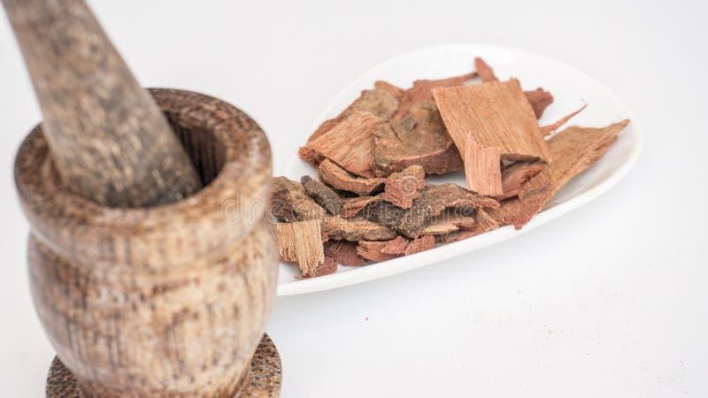 Ayurveda/ Médicament à base de plantes Arbre à douche dorée / écorce du Laburnum indien photo libre de droits