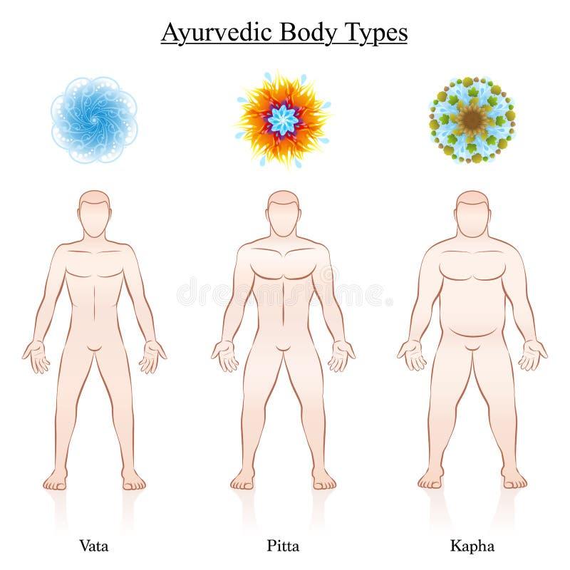 Ayurveda symboli/lów Vata Pitta Kapha Męskiego ciała typy ilustracji