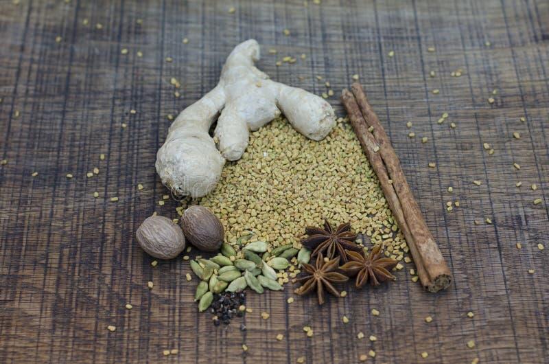 Ayurvedic香料的排列 免版税库存图片