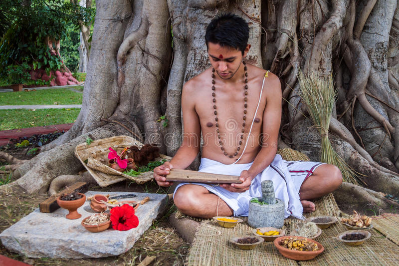Ayurvedic Doctor. A young ayurvedic doctor reads ancient vedic palm leaf scrolls in the traditional manner in India stock images