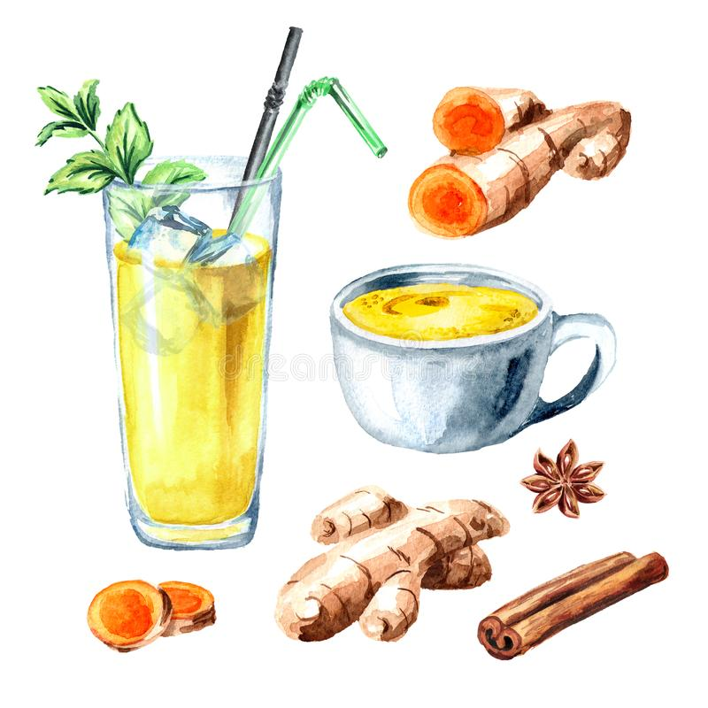 Ayurvedic drink golden coconut milk turmeric iced latte with mint and spicies set. Watercolor hand drawn illustration, isolated on. White background stock illustration