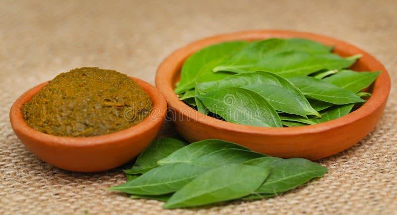 Ayurvedic henna leaves royalty free stock image