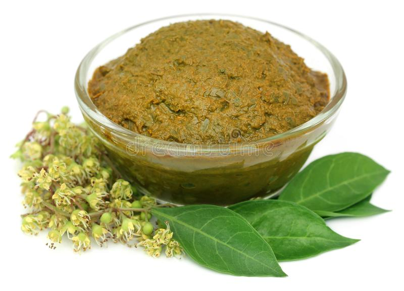 Ayurvedic henna leaves royalty free stock images