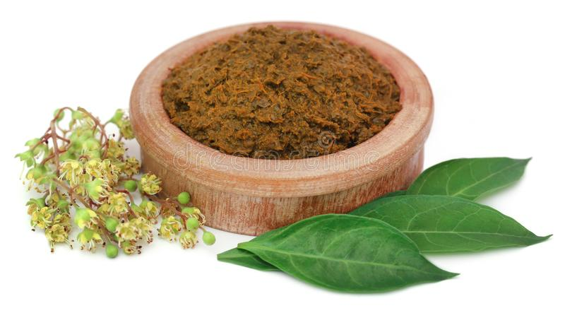 Ayurvedic henna leaves and flower royalty free stock images