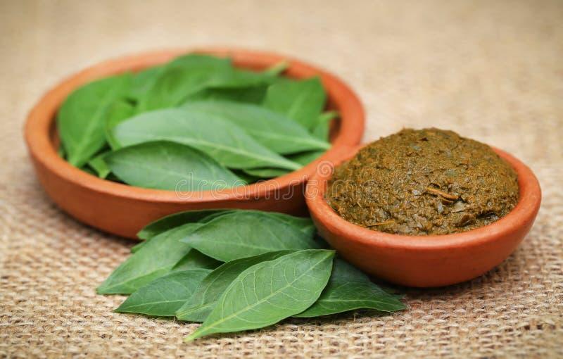 Ayurvedic henna leaves royalty free stock photos