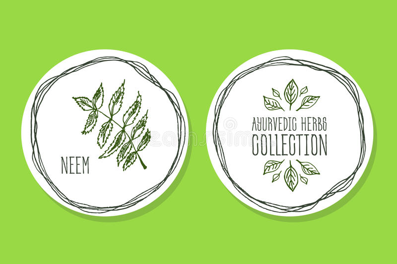 Ayurvedic Herb - Product Label with Neem royalty free illustration