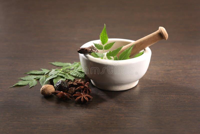 Ayurvedic Herbs. With Mortar and Pestle royalty free stock photos