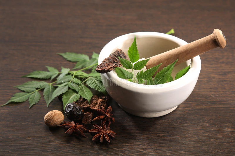 Ayurvedic Herbs. With Mortar and Pestle royalty free stock photography