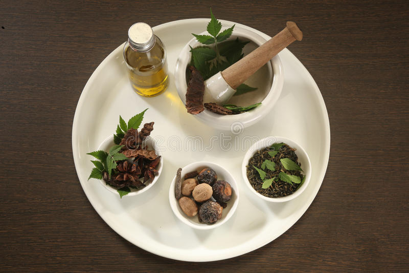 Ayurvedic Herbs with Mortar and Pestle. Indian Ayurvedic Herbs with Mortar and Pestle stock photos