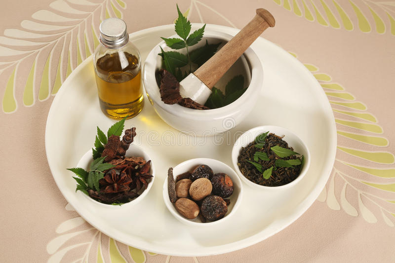 Ayurvedic Herbs with Mortar and Pestle. Indian Ayurvedic Herbs with Mortar and Pestle royalty free stock photo