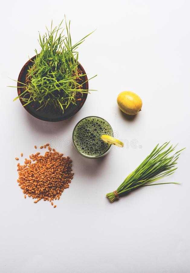 Stock photo of wheat grass health juice. Ayurvedic or medicinal Wheat grass juice with lemon slice in glass, selective focus royalty free stock image