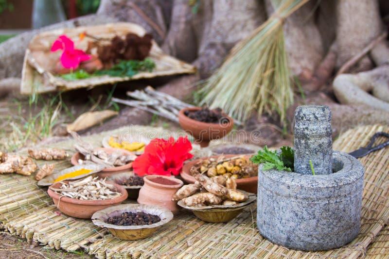 Ayurvedic Medicine. Alternative ayurvedic herbs and utensils arranged under a banyan tree royalty free stock photo