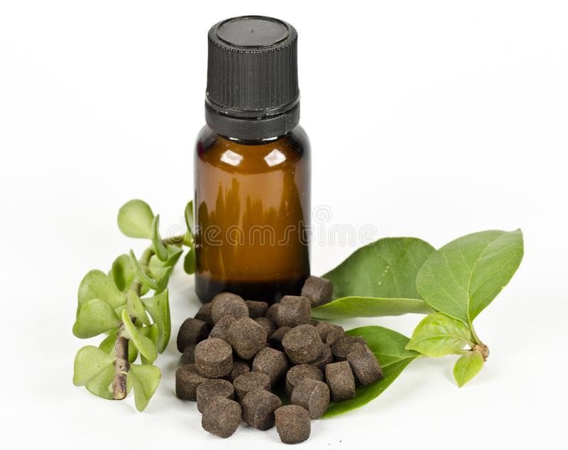 Ayurvedic medicine pills with herbs and oil. On white background stock photography