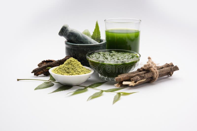 Ayurvedic neem producten zoals deeg, poeder, olie, sap, tandzorg stock afbeeldingen