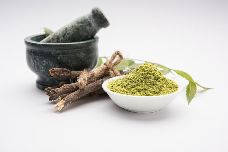 Ayurvedic neem products like paste, powder, oil, juice, tooth care. Medicinal Ayurvedic Azadirachta indica or Neem leaves in mortar and pestle with neem paste stock photo